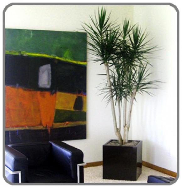 interior design 71